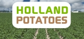 Holland Potatoes